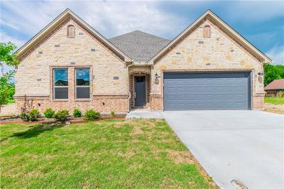 Wise County Single Family Home For Sale: 2924 Josie Drive