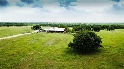 Palo Pinto County Farm & Ranch For Sale: 575 Dyer Road