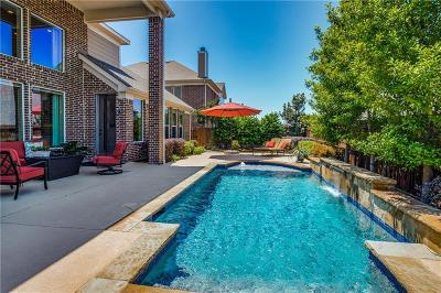 Little Elm Single Family Home For Sale: 14001 Signal Hill Drive