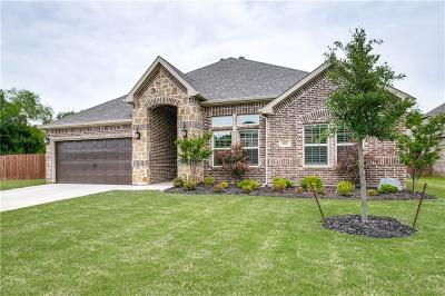 Mansfield Single Family Home For Sale: 402 Turnstone Drive