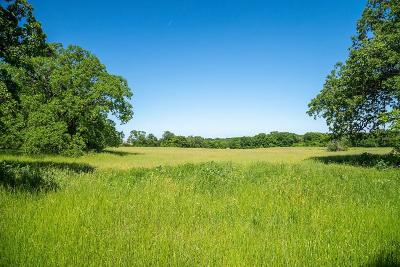 Tarrant County Farm & Ranch For Sale: 1340 Ottinger Road