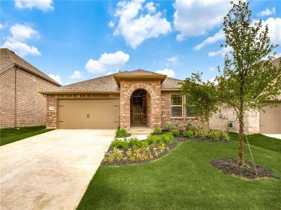 McKinney Single Family Home For Sale: 2908 Country Church Road