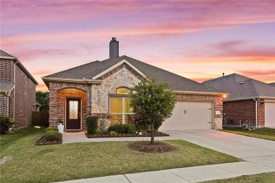 McKinney Single Family Home For Sale: 10425 Hidden Haven Drive