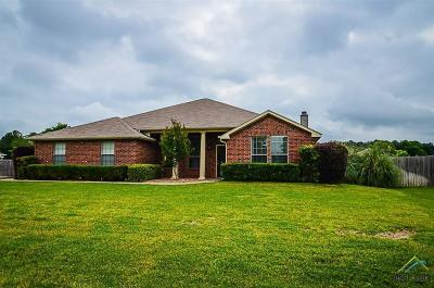 Tyler Single Family Home For Sale: 12142 Cross Fence Trail