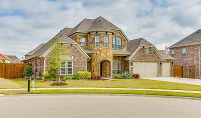 Frisco Single Family Home For Sale: 13134 Mardi Gras Lane