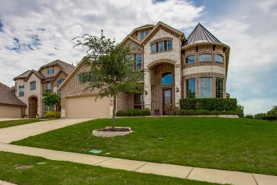 Single Family Home For Sale: 20 Center Court
