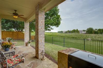 Collin County Single Family Home For Sale: 1204 Somerset Drive