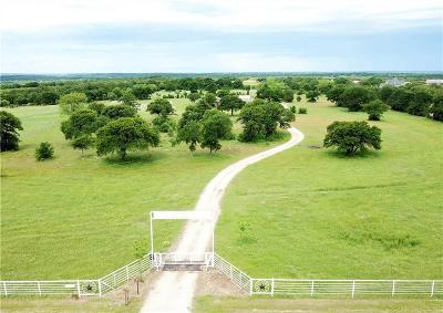Weatherford Farm & Ranch For Sale: 1201 N Fm 113