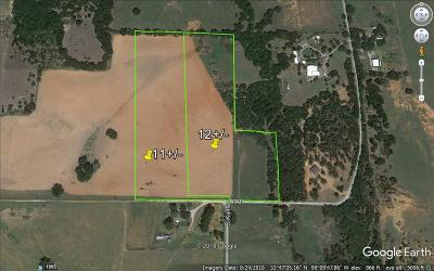 Mineral Wells Farm & Ranch For Sale: 0000 S Keller Road