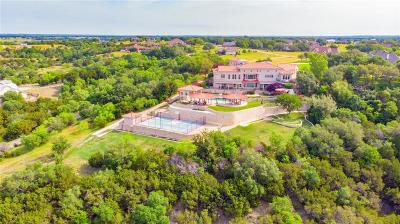 Parker County, Tarrant County, Hood County, Wise County Single Family Home For Sale: 2016 Tree Top Court