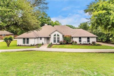 Parker County Single Family Home For Sale: 123 Lakeview Drive