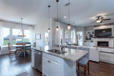 Gunter Single Family Home For Sale: 1705 Eagle Glen Pass