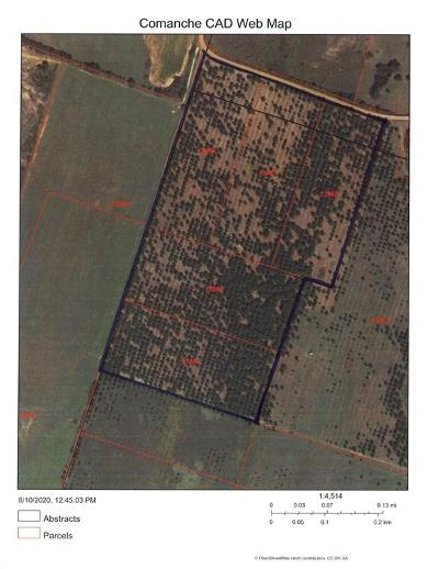 Comanche Farm & Ranch For Sale: Tbd County Rd 446