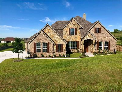 Fort Worth Single Family Home For Sale: 12448 Bella Vineyard Drive