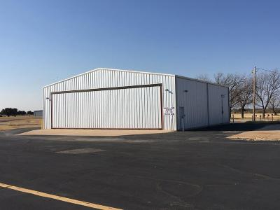 Breckenridge Commercial For Sale: 622 County Road 150 #100