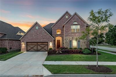 Little Elm Single Family Home For Sale: 757 Sandbox Drive