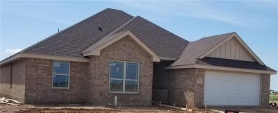 Abilene Single Family Home Active Kick Out: 7386 Connor Drive