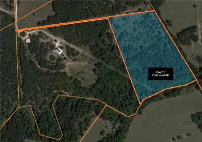 Springtown Residential Lots & Land For Sale: 374 Pr 3633 C