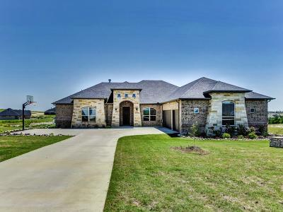 Fort Worth Single Family Home For Sale: 12211 Bella Posto Drive
