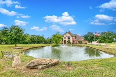 Parker County Single Family Home For Sale: 673 E Canyon Creek Lane