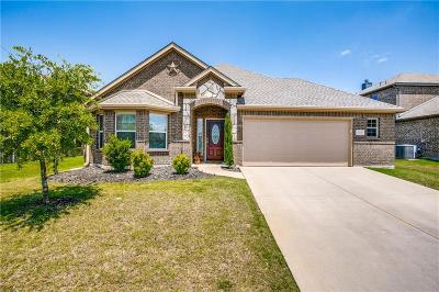 Little Elm Single Family Home For Sale: 15016 Lone Spring Drive