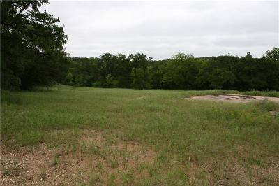 Mineral Wells Commercial Lots & Land For Sale: 8101 180 Highway E