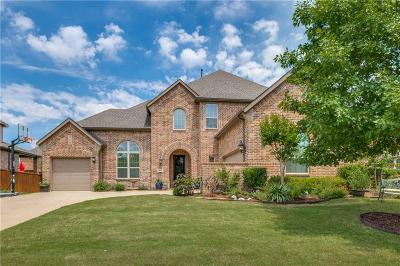 Prosper Single Family Home For Sale: 841 Essex Drive