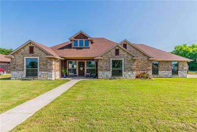 Parker County Single Family Home For Sale: 160 Arrowpoint Drive