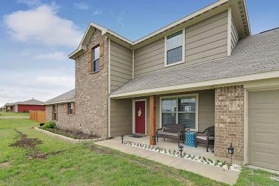 Weatherford Single Family Home For Sale: 134 Blue Ridge Drive