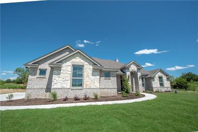 Weatherford Single Family Home For Sale: 123 Morgan Meadows Drive