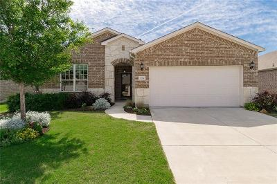 Collin County, Denton County Single Family Home For Sale: 7254 Honeybee Lane