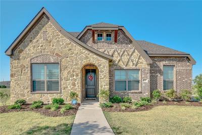Waxahachie Single Family Home For Sale: 152 Sapphire Lane