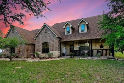 Parker County Single Family Home For Sale: 1005 Vista Hills Drive