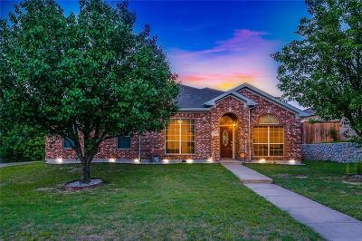 Parker County Single Family Home For Sale: 2301 Summer Brook Drive