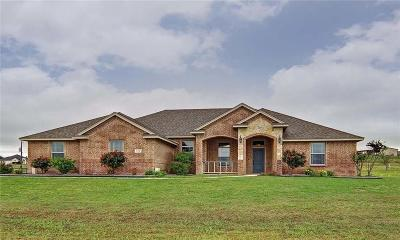 Weatherford Single Family Home For Sale: 116 Patrick Drive