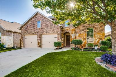 Little Elm Single Family Home For Sale: 325 Bluefinch Drive