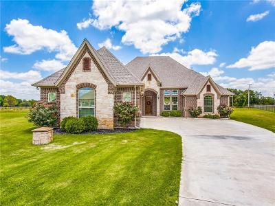 Parker County Single Family Home For Sale: 124 Ranch Meadow Court