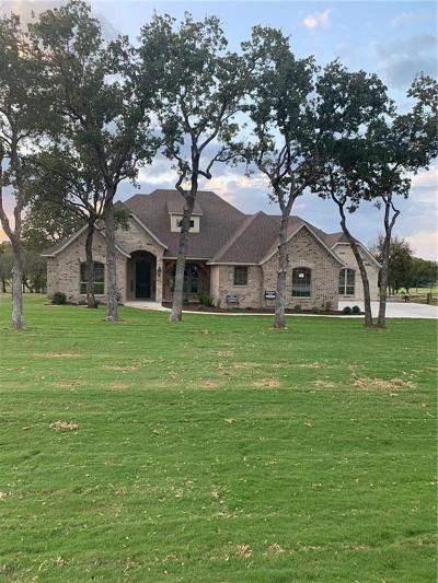 Parker County Single Family Home For Sale: 582 S Sugartree Drive