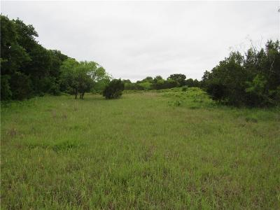 Stephenville Farm & Ranch For Sale: 16934 Farm Road 205
