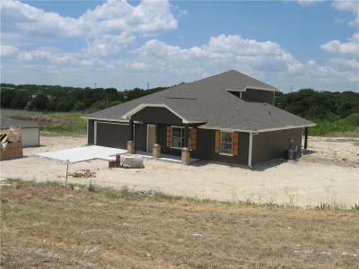 Parker County Single Family Home For Sale: 163 Brazos Valley Lane