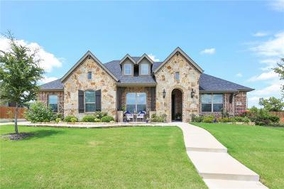 Waxahachie Single Family Home For Sale: 143 Water Garden Drive