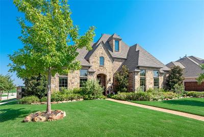 Collin County Single Family Home For Sale: 1201 Circle J Trail