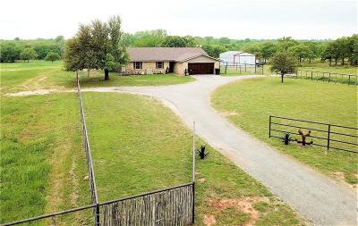 Parker County Farm & Ranch For Sale: 16801b Fm 920