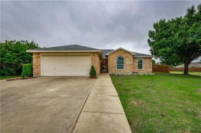 Wylie Single Family Home For Sale: 1023 Dodd Drive