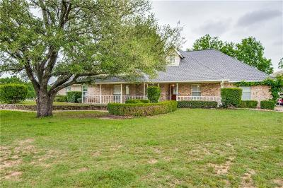 Springtown Single Family Home For Sale: 8098 N Fm Road 51