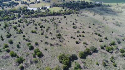 Angus, Barry, Blooming Grove, Chatfield, Corsicana, Dawson, Emhouse, Eureka, Frost, Hubbard, Kerens, Mildred, Navarro, No City, Powell, Purdon, Rice, Richland, Streetman, Wortham Farm & Ranch For Sale: 0000 SW County Road 1150