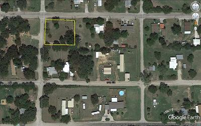 Mineral Wells Residential Lots & Land For Sale: 707 SW 22nd Street