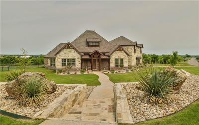 Weatherford Single Family Home For Sale: 119 Club House Drive