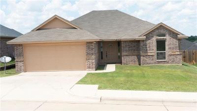 Parker County Single Family Home For Sale: 1038 Inverness Drive