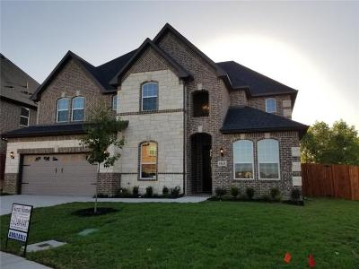 Irving Single Family Home For Sale: 4163 Napoli Way